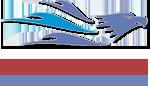 Royaleagle Yachting & Brokerage M. Ltd Logo